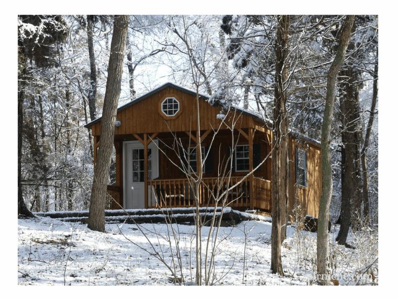 Winter Forest Planner PLR Cabin