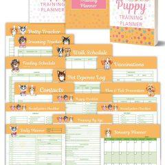 Puppy Training PLR