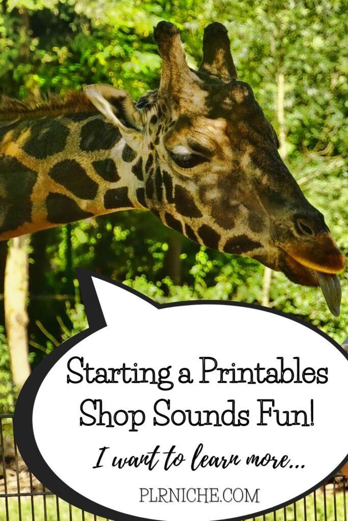 Starting a Printables shop shounds fun!
